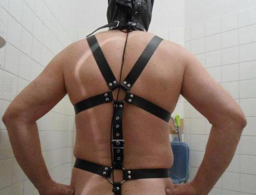 UDINE Master Maturo con esperienza